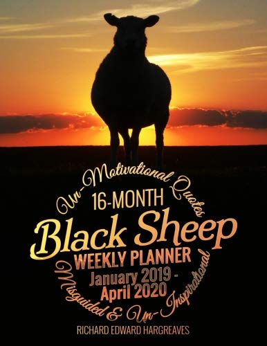 Black Sheep 2020